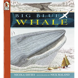 Discover the wonders of the ocean with this amazing Big Blue Whale.