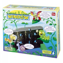 Sprout And Grow Window