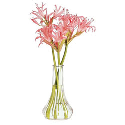 "6"" Clear Bud Vase (Set of 2)"