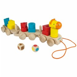 Shapy Train (18 Pieces)
