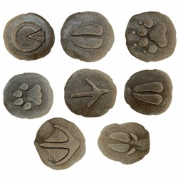 Farmyard Footprints™ (Set of 8)