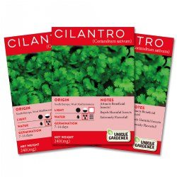 Cilantro Seeds 3-Pack