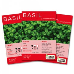 Sweet Basil Seeds 3-Pack