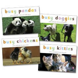 Busy Animals Board Books - Set of 4