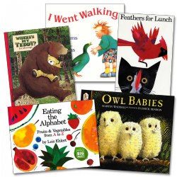Big Book Starter Set - Set of 5