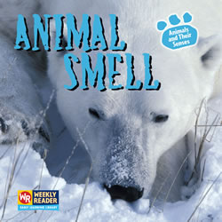 Animal Smell - Paperback