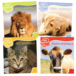 All About Animals Boardbook