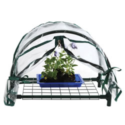 "3 years & up. Mini greenhouse with elevated storage shelf is perfect for small spaces indoors or outdoors. The zippered closing cover is constructed with waterproof transparent plastic which can be rolled back and secured with ties. Powder-coated, steel frame. Measures 12""H x 17""W x 10""D."