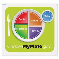 MyPlate Activity Mat