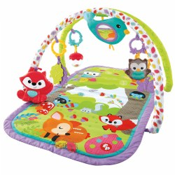 Woodland Friends 3-in-1 Musical Gym