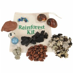 Rainforest Biome Kit