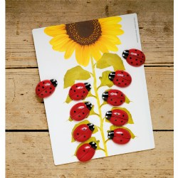 Ladybug Stones and Activity Cards