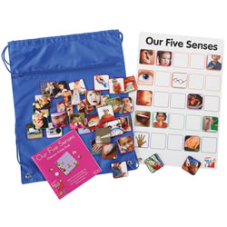 Our Five Senses Interactive Game