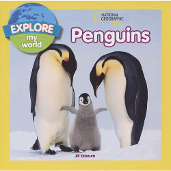 Penguins - Paperback