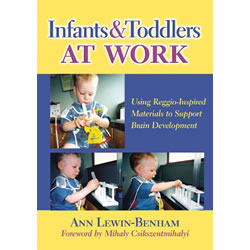 Infants & Toddlers at Work - Paperback