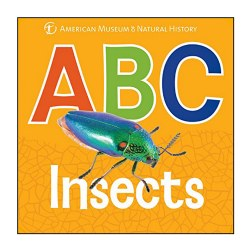 ABC Insects - Board Book