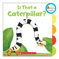Is That a Caterpillar? - Board Book