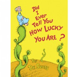Did I Ever Tell You How Lucky You Are? - Hardcover