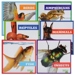 Animal Classification Books - Set of 6