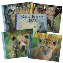 Nature Babies Books - Set of 5