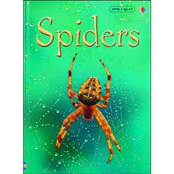 Spiders, Level 1: Internet Referenced (Beginners Nature - New Format) Hardback