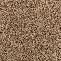Honey Beige Carpet