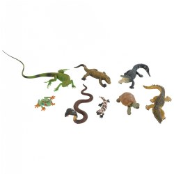 Tropical Habitat - Set of 8