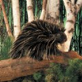 Alternate Thumbnail Image #3 of Porcupine Hand Puppet