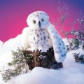 Alternate Image #2 of Snowy Owl Hand Puppet