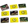 Alternate Image #1 of Insects & Bugs Photographic Memory Matching Game