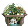 Sensory Eco-Biosphere Plant Dome with 5 Different Plant Seeds