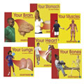 Grades K - 3. From head to toe, this series covers major parts of the body, how they function, and what they look like. Through photo diagrams, illustrations, and definitions, young readers will appreciate this simple look at anatomy.