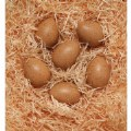 Main Image of Sensory Sound Eggs - Set of 6