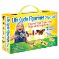 Alternate Thumbnail Image #1 of Life Cycle Figurines - 24 Pieces