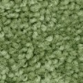 Alt Thumbnail #1 of Nature Inspired Carpet - Grass Green - 4' x 6' Rectangle