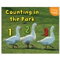 Alternate Thumbnail Image #1 of I Can Count Books - Set of 3