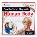 Alternate Thumbnail Image #4 of Double-Sided Magnetic Human Body