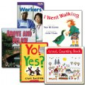 Classroom Leveled Library Books - Level C - Set of 29