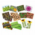 Thumbnail of Ladybug Activity Cards (16 Cards)