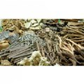 Alternate Thumbnail Image #1 of Natural Wooden Loose Parts Kit