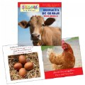 Alternate Thumbnail Image #2 of All About Animals Board Books - Bilingual Book Set