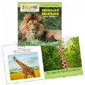 Alternate Thumbnail Image #3 of All About Animals Board Books - Bilingual Book Set