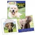Alternate Thumbnail Image #4 of All About Animals Board Books - Bilingual Book Set