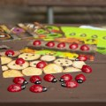 Alt Thumbnail #3 of Ladybug Stones with Activity Cards