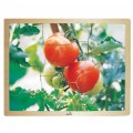 Alternate Thumbnail Image #1 of Fresh Vegetables Wooden Puzzles - Set of 6