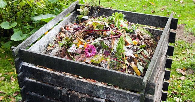 Setting Up An Outdoor Compost Bin