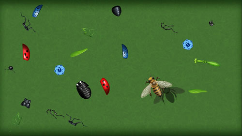 Insect Creator